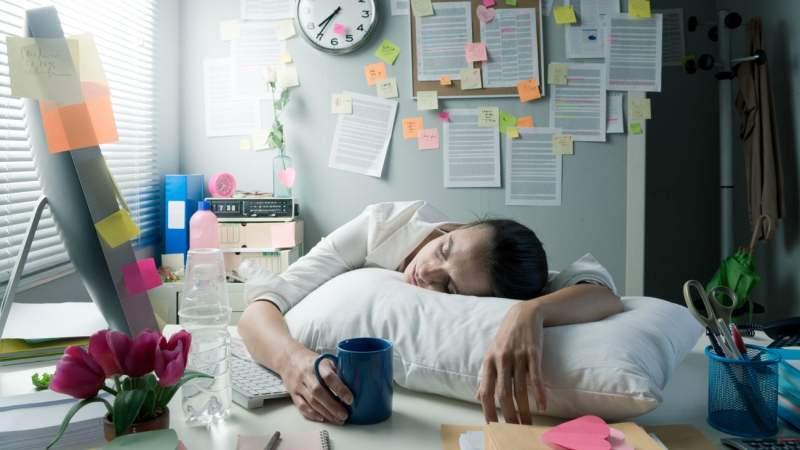 Stock-Asso / Shutterstock.com