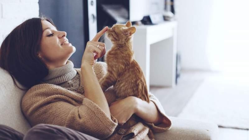 Alena Ozerova / Shutterstock.com